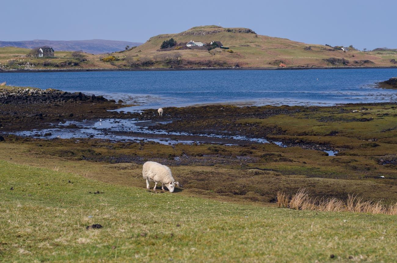 Skotsko - Isle of Skye cesta